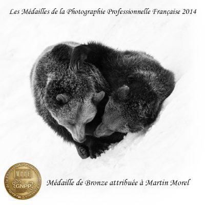 medaille-bronze-mppf-2014